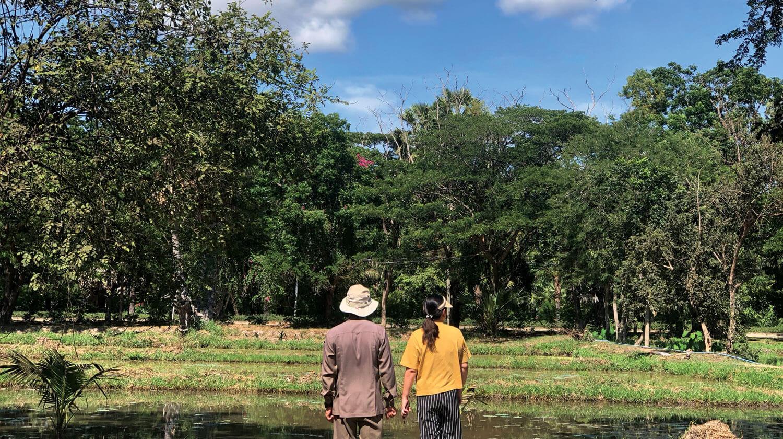 PATANA Organic Farm